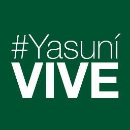 @Yasuni_VIVE