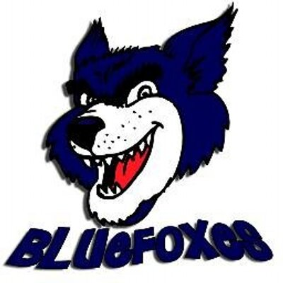 Bluefoxes