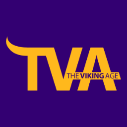 The Viking Age Social Profile