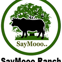 SayMooo Ranch