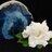 Rivendell Rock Jewel