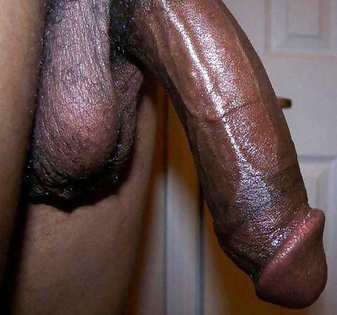 Large Black Gay Cock 80