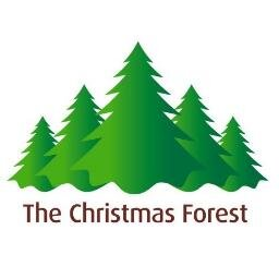 Logo de la société The Christmas Forest