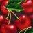 cherry biebie