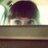 Shiny_Jayne
