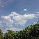 sky (@11omo11) Twitter