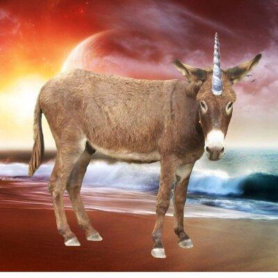 Apologise, Sex position donkey style me