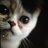 猫カフェ寧估庵のアイコン