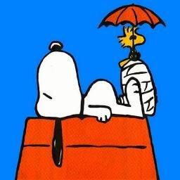 Snoopy スヌーピー 名言bot Sur Twitter ペパーミント パティ 休みの間に読むことになってる 戦争と平和 のことなんだけどお互いに助けっこしない あなたは 戦争 を読むの マーシーが 平和 を読んで フランクリン 君は何を読むの ペパーミント パティ と
