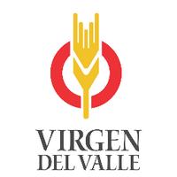 Virgen del Valle SA