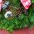 Jen's Wreaths