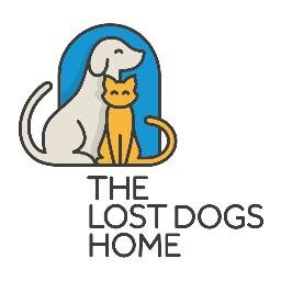 The Lost Dogs' Home Social Profile