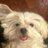java_'s avatar