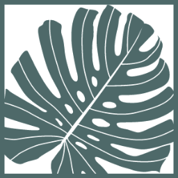 Makimoplant 観葉植物のお店 Makimoplant Twitter