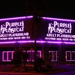 Purple Pussy Cat 60
