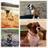 Kloud9 Boxers & Pugs