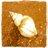 michaelcymru's avatar'