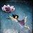 lotusflower_di