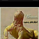 melfi s al mutairi (@19571s) Twitter