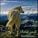 فيصل الرشيدي (@13mhmd202) Twitter