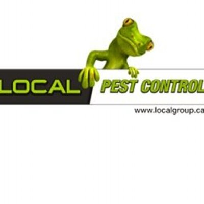 Local Pest Control (@bcbug)  Twitter. Self Employed Health Insurance Colorado. Gallbladder Problems While Pregnant. Colleges In Fort Worth Tx Seattle Eye Doctors. Car Insurance Greenville Sc Health Plans Inc. Georgetown Plastic Surgery Animated Thumbs Up. Texas Renters Insurance Audi A5 Leasing Deals. Where Can I Sell My Gold Jewelry For Cash. Online Gre Prep Course Laser Eye Color Change
