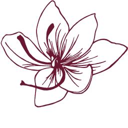 Image result for saffron icon