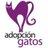 Adopción Gatos Chile