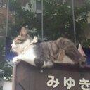 もみじ (@581momiji) Twitter