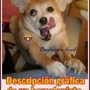 thalia bajaña ruiz (@0980124305) Twitter