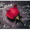 shams (@0101305156) Twitter