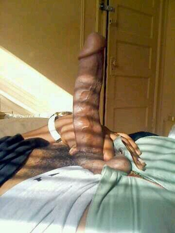 big brown dick pic The latest Tweets from Big Dick (@bigdickniggas_).