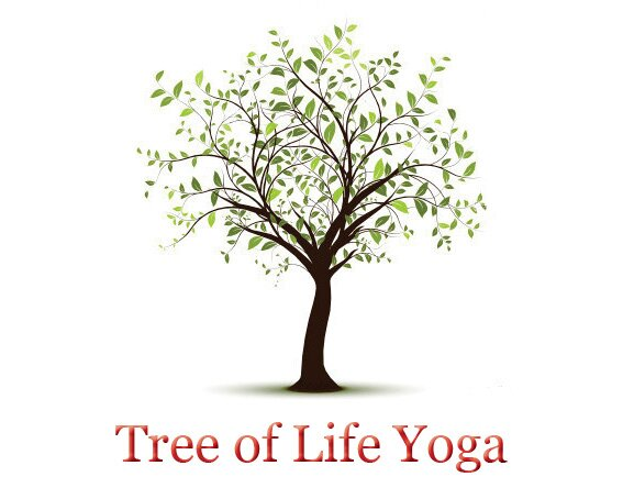 yoga tree of life yogatreeoflife twitter