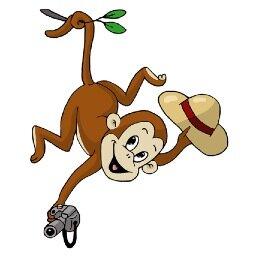 Cheeky Monkey Safari