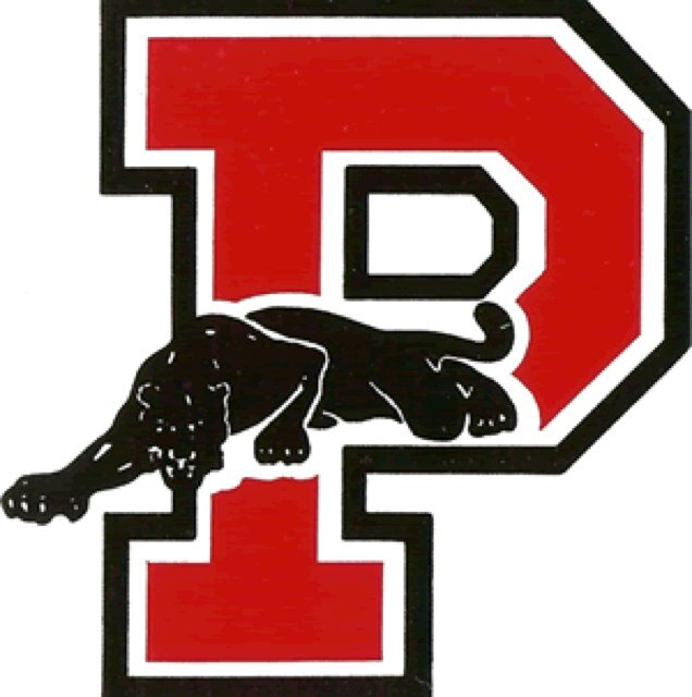 Image result for palmyra panther varsity letter