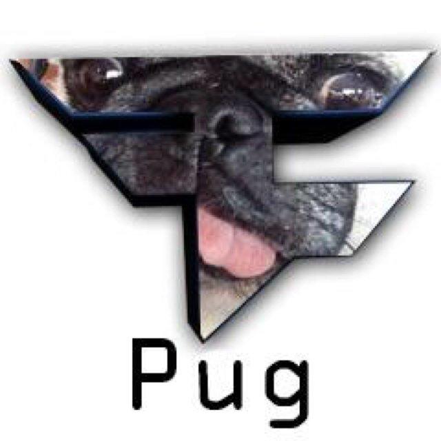 Benji Faze Rug Dog Breed: FaZe Pug (@StuffOnFaZePug)