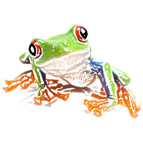 lucky frog studio theluckyfrog twitter