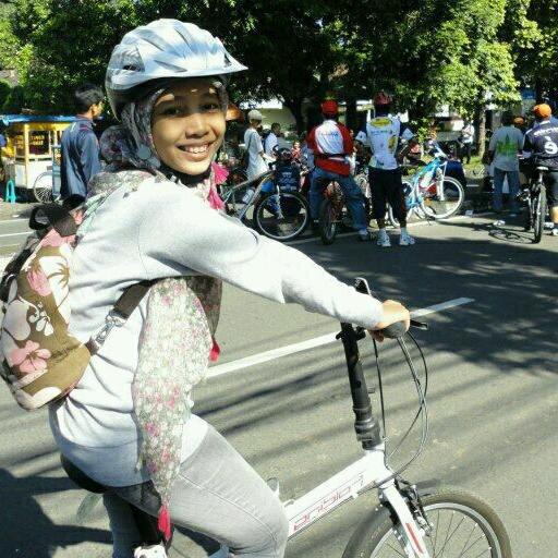 Indonesian Democratic Party - Wikipedia