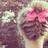 Peinados y Trenzas ♥