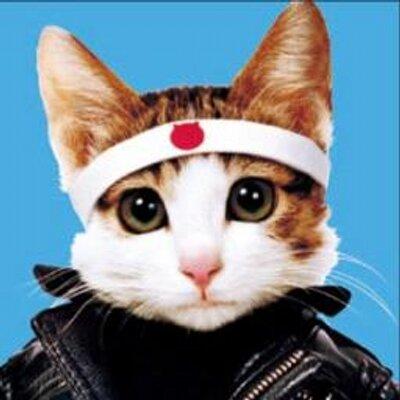 猫になめられる - こころの文庫 - blog.goo.ne.jp
