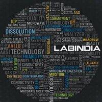 Labindia Analytical