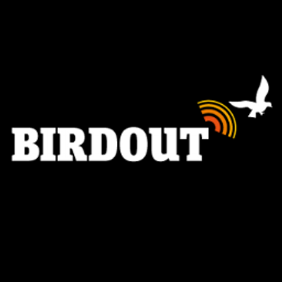 dissuasori piccioni scacciapiccioni twitter