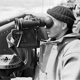 Hermann Observer