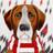 Liverpool News Hound twitter profile