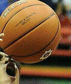 dbuzzketball