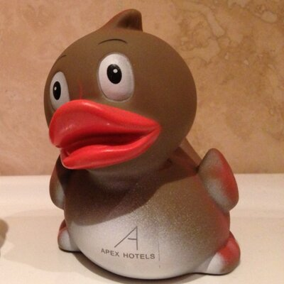 Mr Rubber Duck (@GeorgeTheDucky) | Twitter