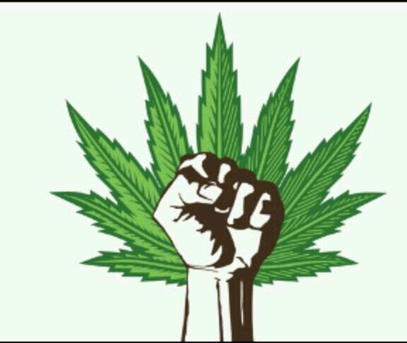 KushStocks™ | Marijuana Investments Edible Recipes Volcano ...