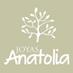 @JoyasAnatoliacl
