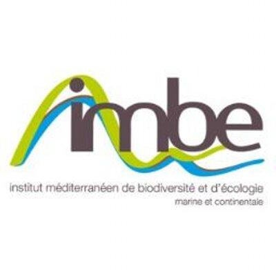 Logo de IMBE