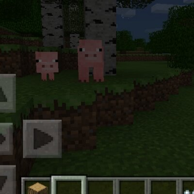 minecraft pe how to find cats