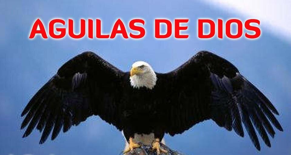 Aguilas De Dios On Twitter No Dudes De La Presencia De Dios En
